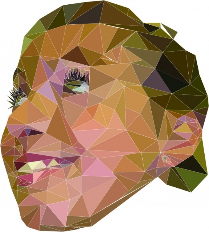 MRS K Inspirebeinspired - The triangle face