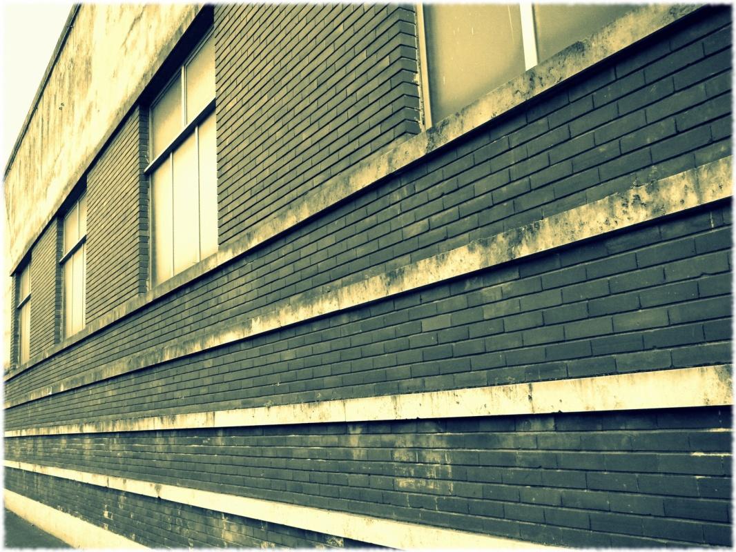Eleonora Gadducci Photographer - The Wall