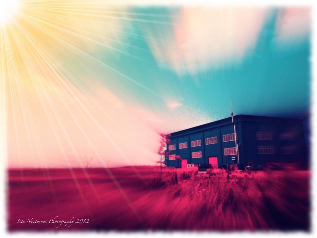 Eleonora Gadducci Photographer - Waiting for the Sun