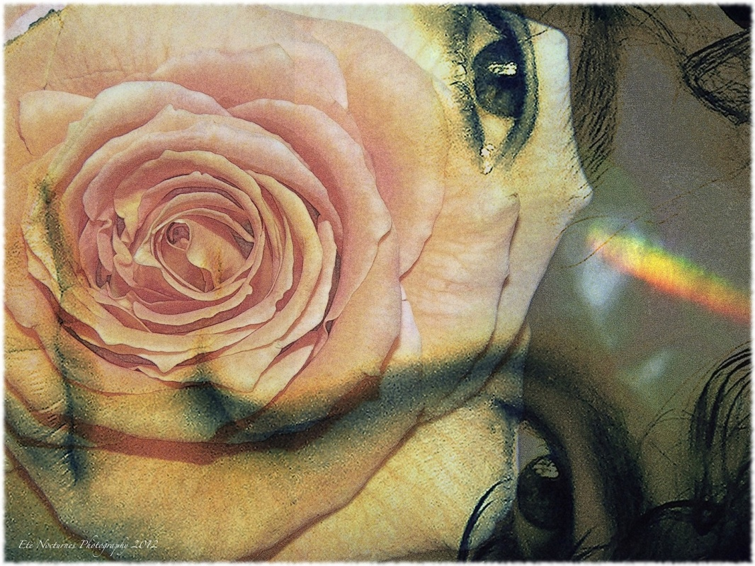 Eleonora Gadducci Photographer - She is the Rainbow