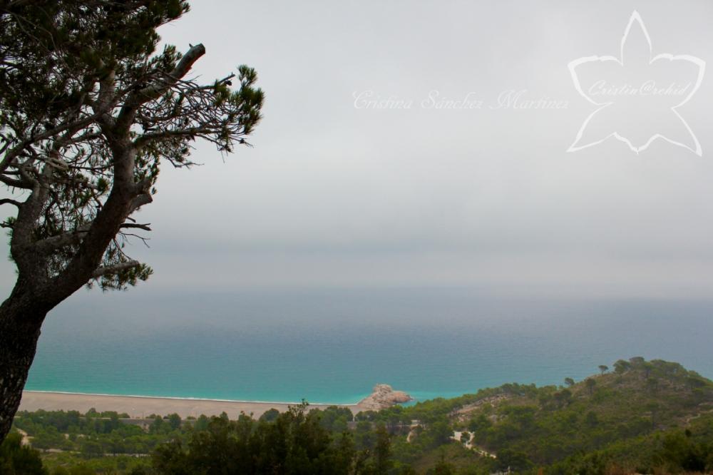 Cristina Sánchez Martínez - Torn beach
