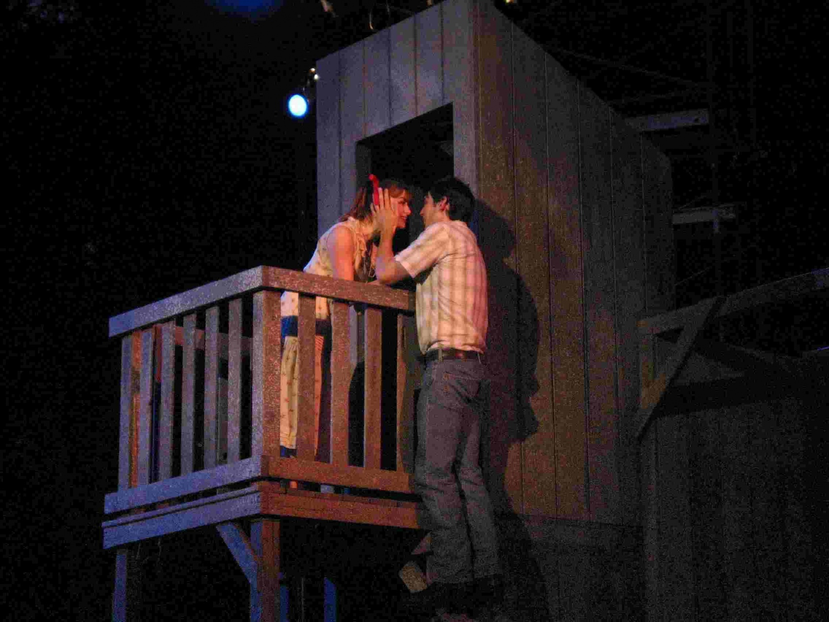 directing romeo and juliet Romeo and juliet is perhaps william shakespeare's most famous play it is a tragedy that feature themes of love and hate, youth and age, and the close bond between.