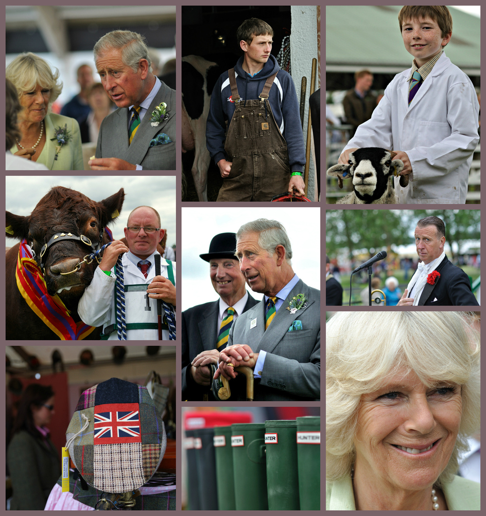 Steven Parker Photography - York based photographer - Coverage of The Great Yorkshire Show for press agency Photoshot