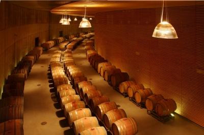 Pallaoro Balzan e Associati - Cantina vitivinicola Maso Poli, Pressano, Lavis, Trento