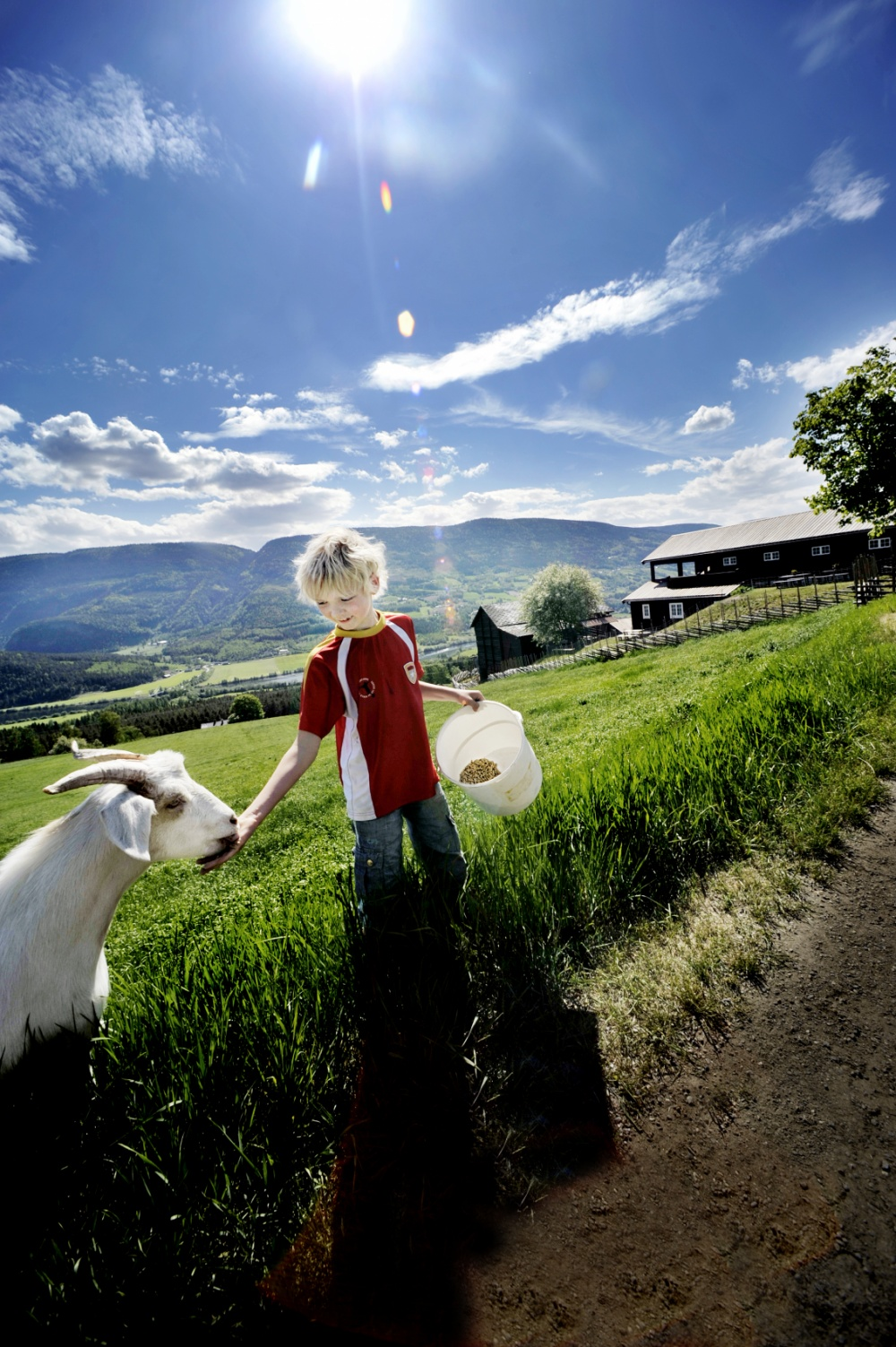 John T. Pedersen Photography - Farmer boy