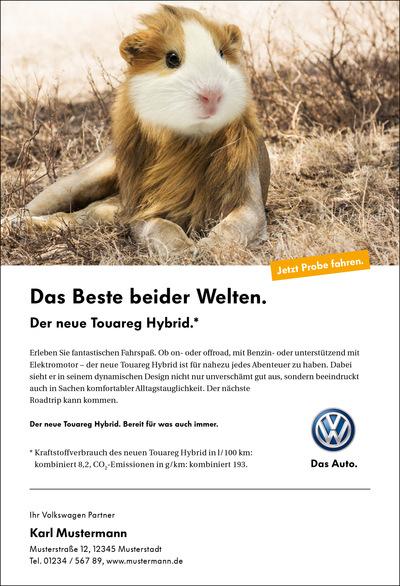 Laura Bender Design Portfolio - Volkswagen Touareg Hybrid diverse Handelsanzeigen