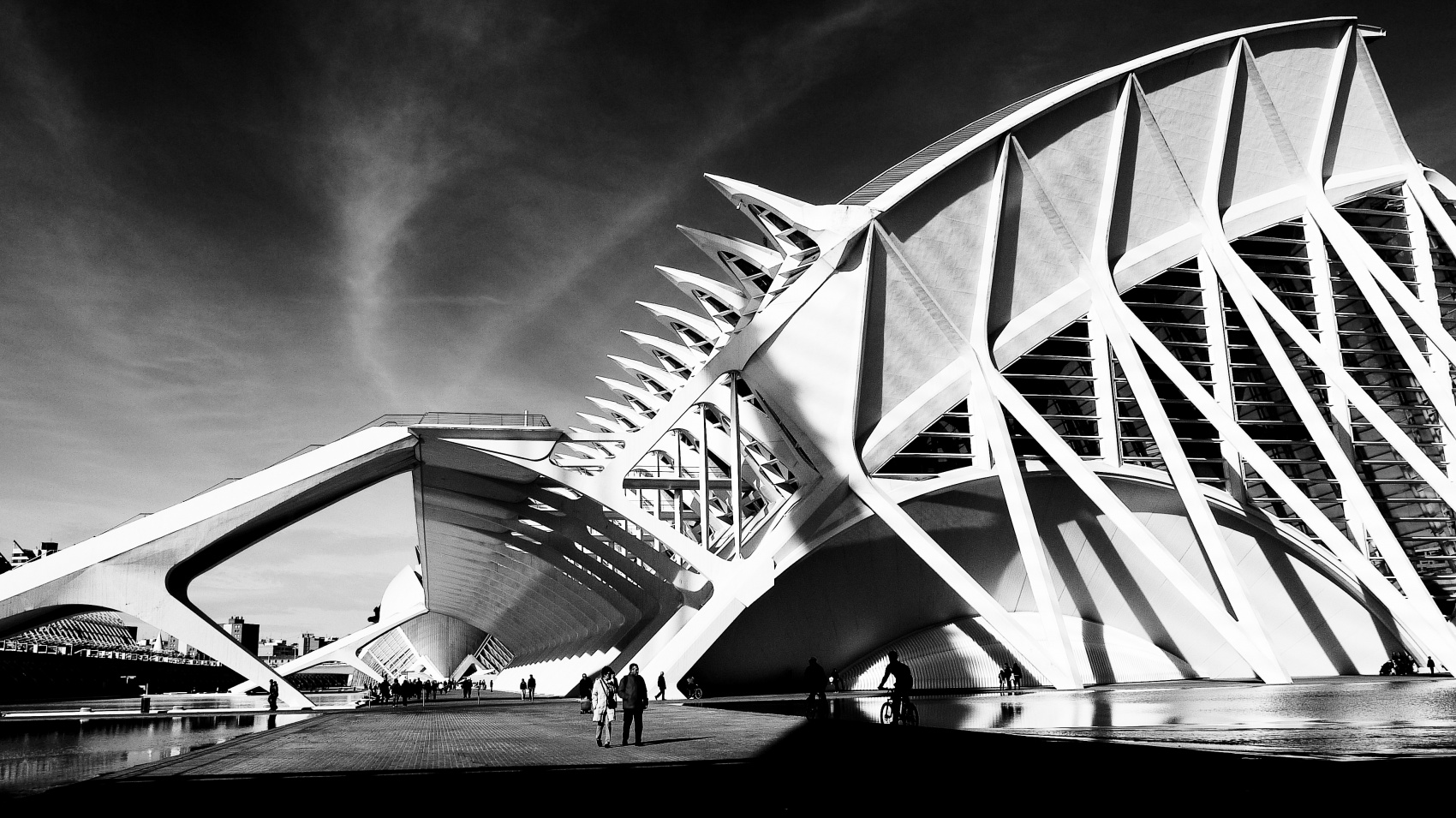 Caught In Time - Valencia, Spain