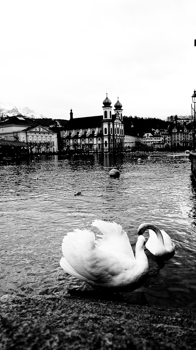 Caught In Time - Luzern