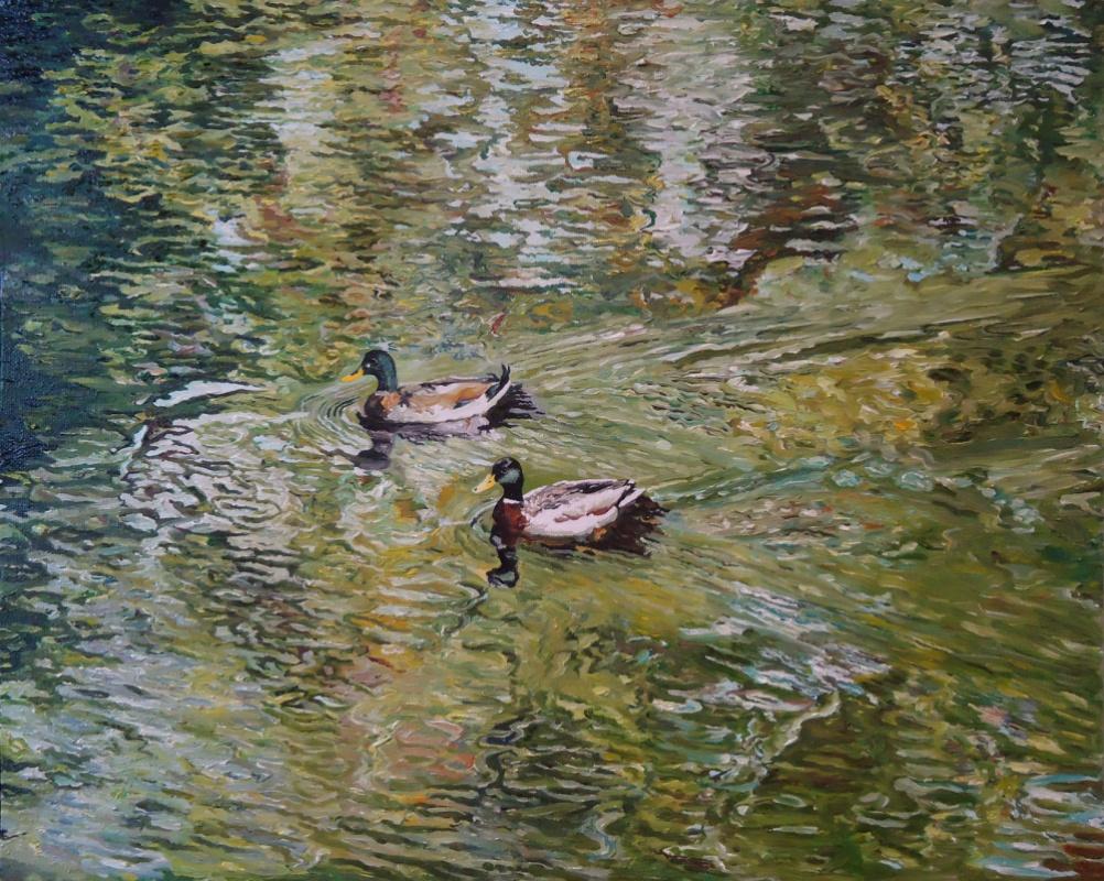 Timothy Adam Matthews - Water Study With Ducks (Green) - 16x20