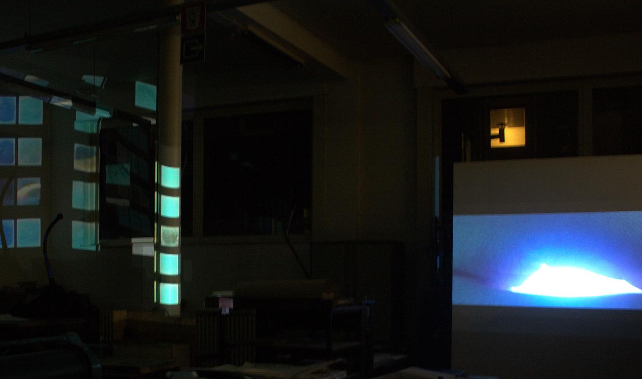 Karolien Chromiak - Cognitive Dissonance, installation view, 2012