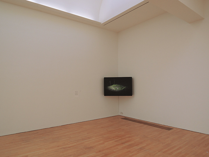 Karolien Chromiak - Installation consisting out of a duraclear print in lightbox suspended in a corner and an audio loop