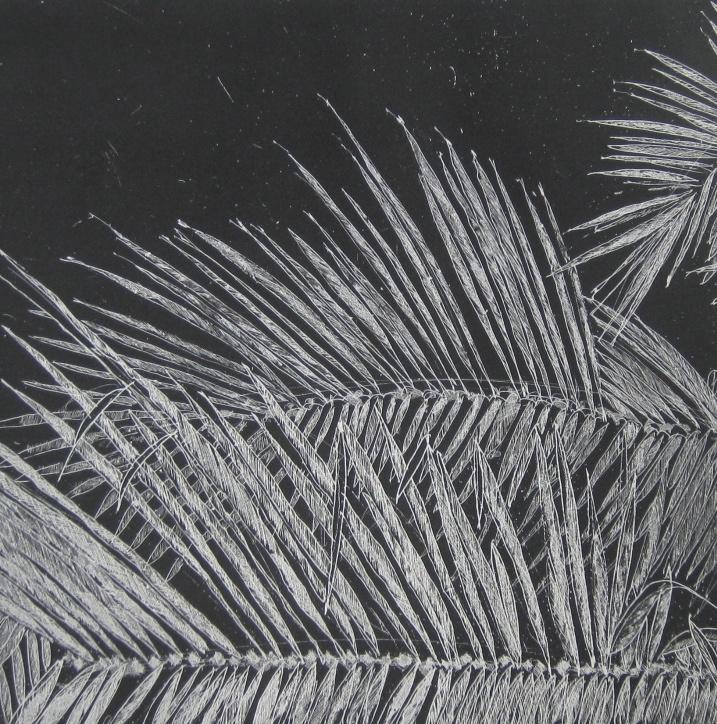 DIANA DAYMOND ART AND DESIGN - PALM FRONDS