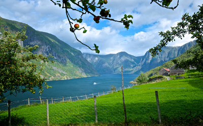 EPIC FJORDS - View from Otternes Farm Yard