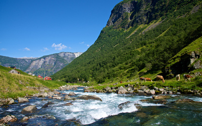 EPIC FJORDS - Undredal by the Aurlandsfjord