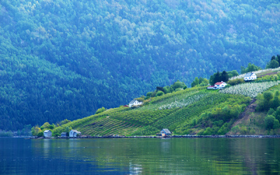 EPIC FJORDS - Blossoming in Hardanger