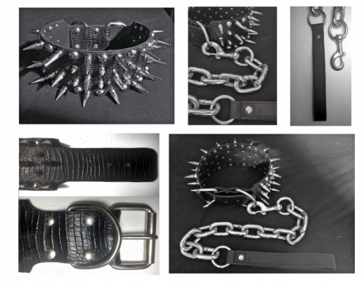 Brendan Kuletz - Dog Collar & Leash Specs