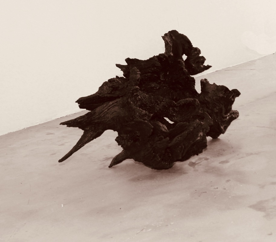 Katarina Elvira Gudrunsdotter - Solo Exhibition, Installation, Remembering the wing inside (roots from fallen oak trees), MUU Gallery, Helsinki, Finland, 2019