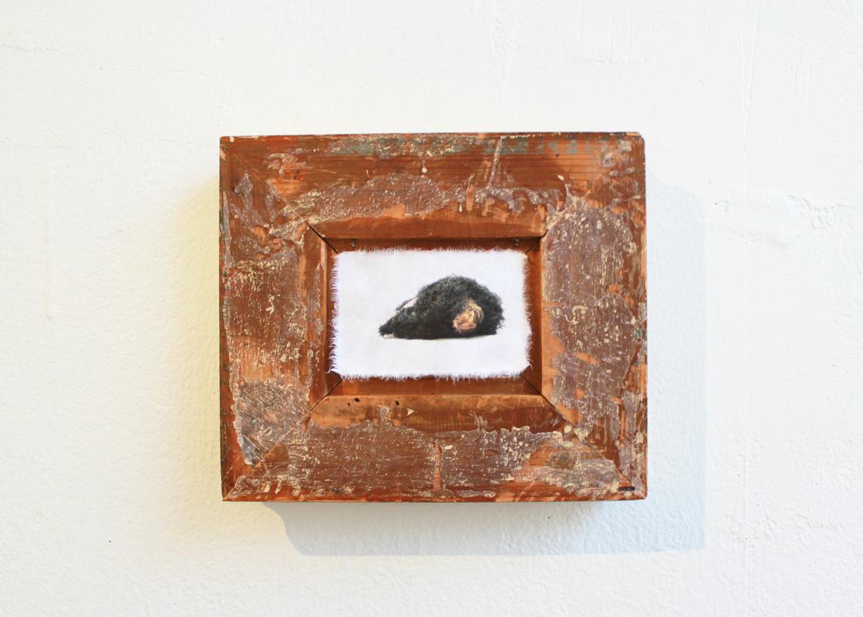 Katarina Elvira Gudrunsdotter - Solo Exhibition, Installation, Illusion of separation (photo on handmade paper, frame 19th century), MUU Gallery, Helsinki, Finland, 2019, artist collaboration with Margaux Bricler, ViaFarini, Milan, 2018