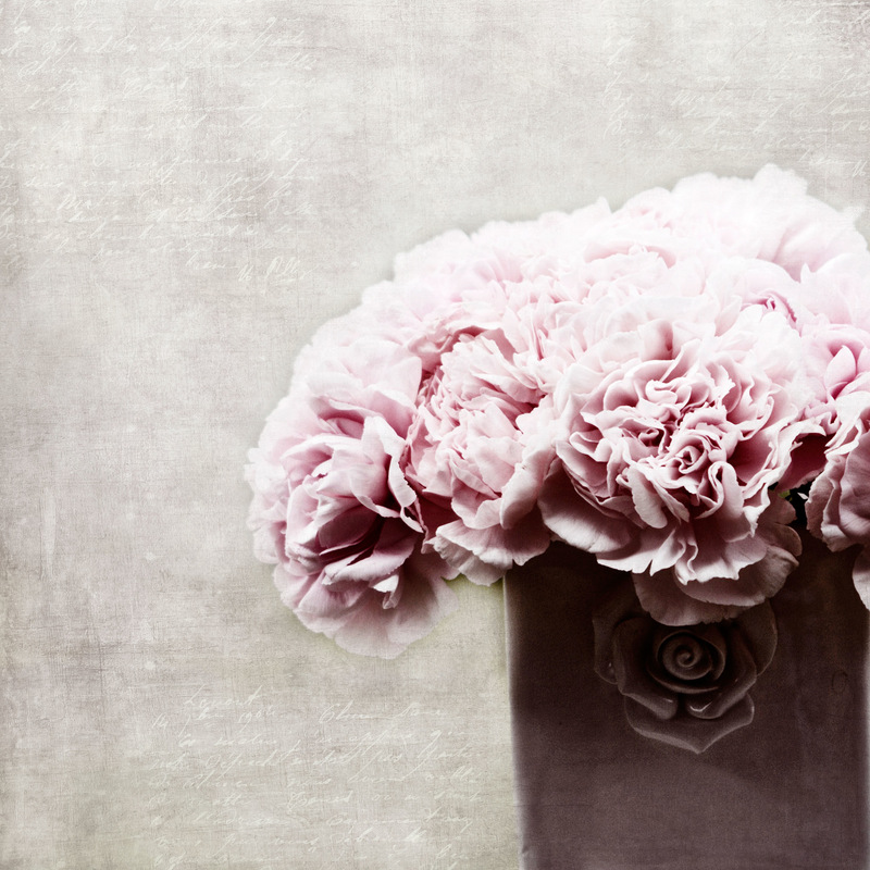 Ev Thomas Photography -