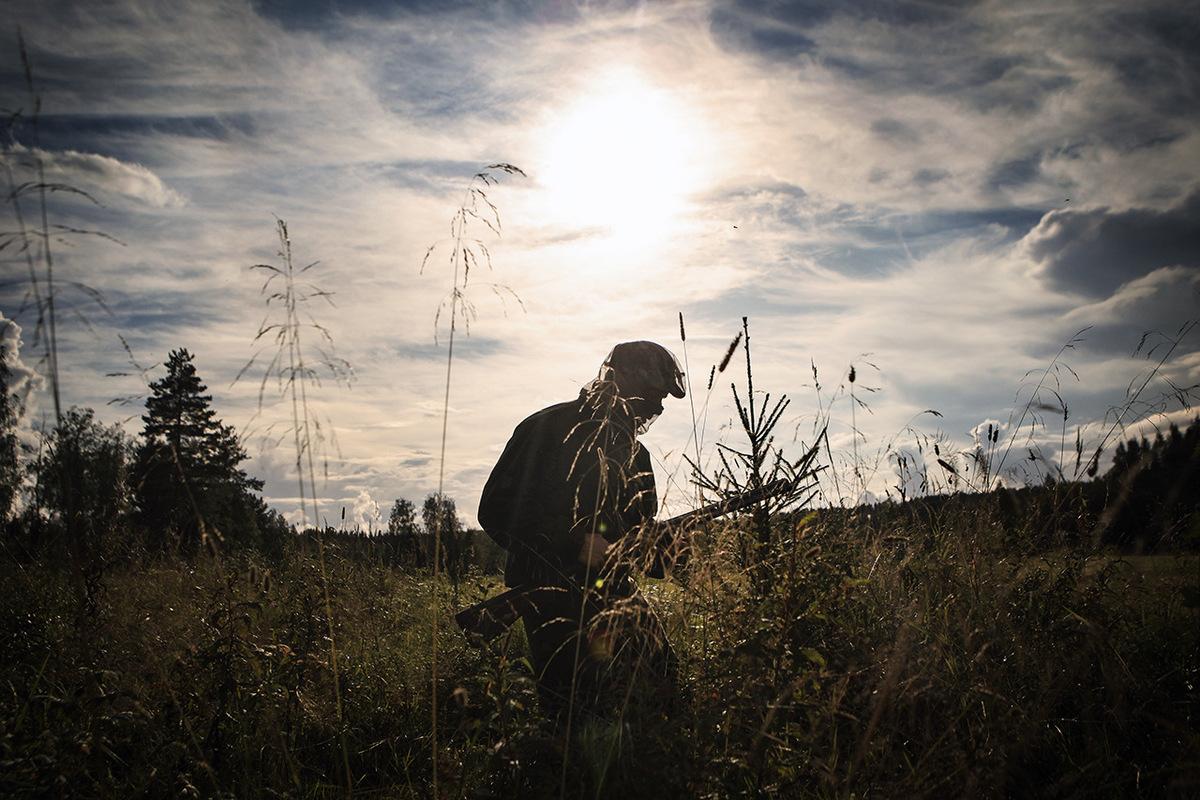 Jetro Stavén photography - Kyyhkysten metsästäjä - Aamuposti
