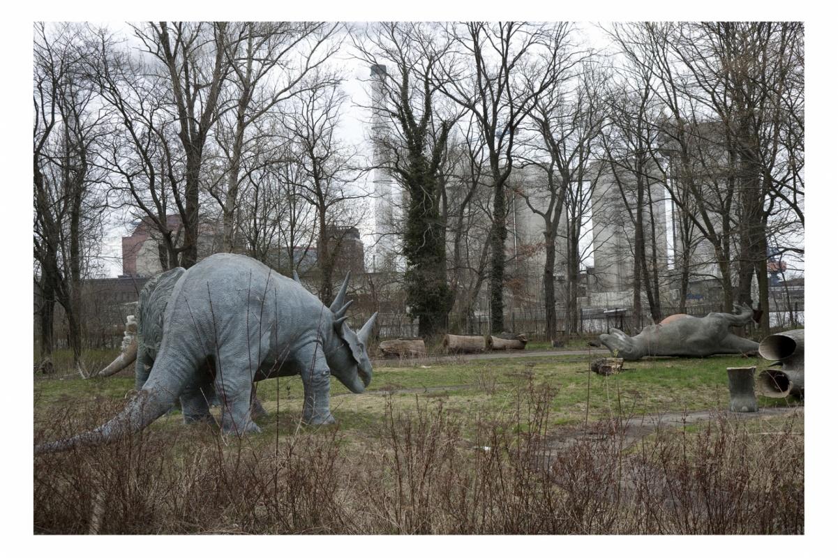 Baerbel Reinhard -