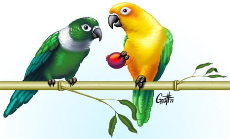 Geoffrey Brittingham all-nite illustration - Parrots