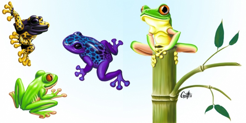 Geoffrey Brittingham all-nite illustration - Frogs