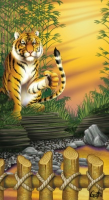 Geoffrey Brittingham all-nite illustration - Tiger zoo