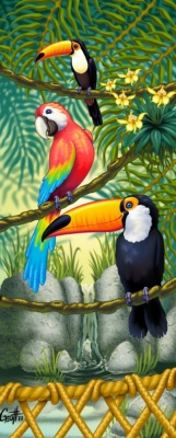 Geoffrey Brittingham all-nite illustration - Toucan,Parrot zoo