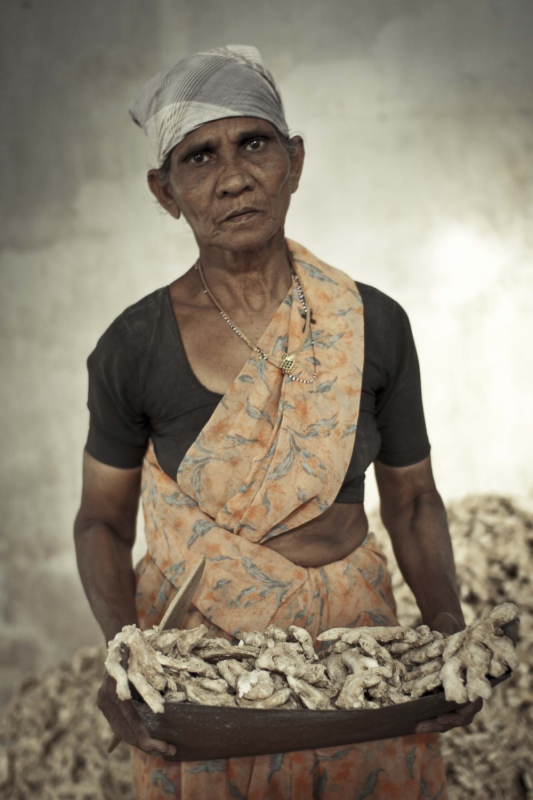 manuel zamora - Mercado de especias de Fort Kochin. India