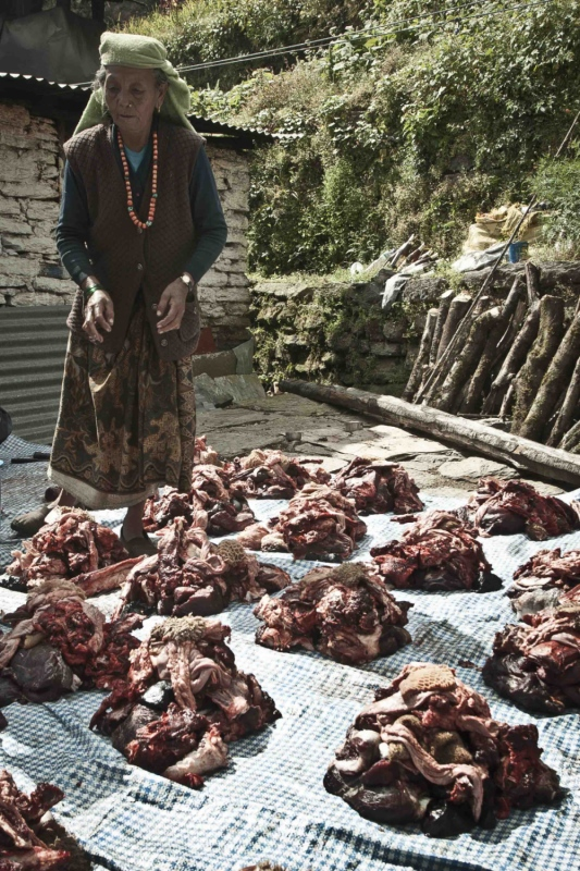 manuel zamora - Mercado de Gorepani. Nepal