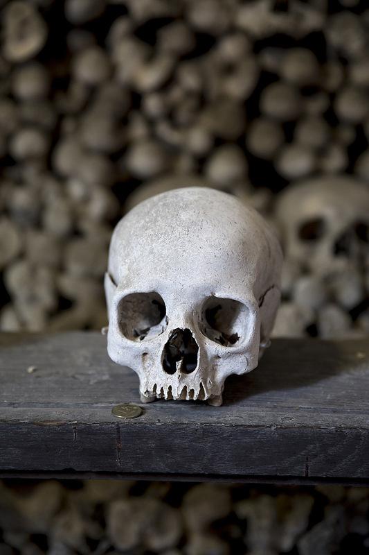 morten normann -