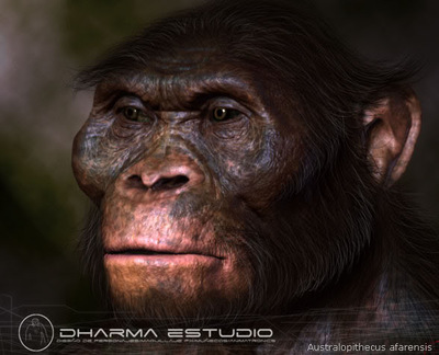 Dharma Estudio -