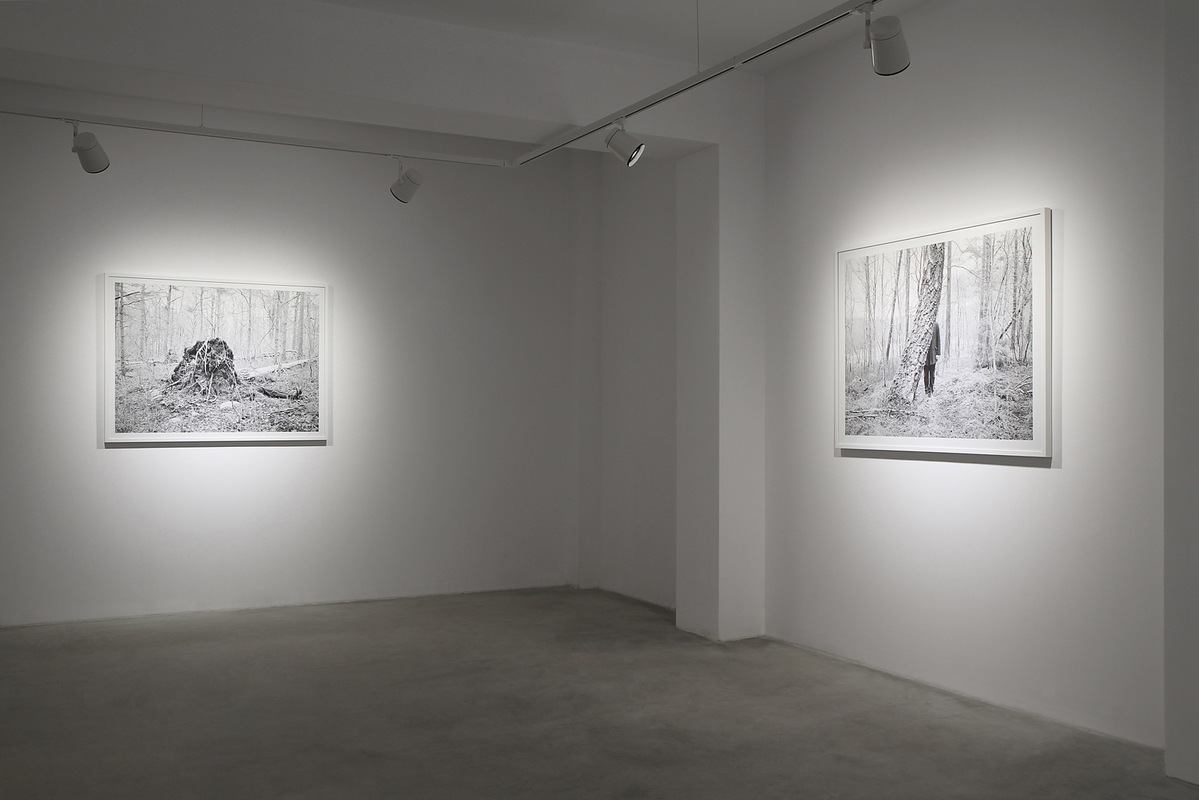 Andrei Venghiac - Installation view from the exhibition Persona. Performing the imperceptible self. 2016, Borderline Art Space, Iasi, Romania