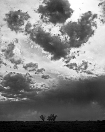 Spindler Photography - New Mexico Clouds and Trees