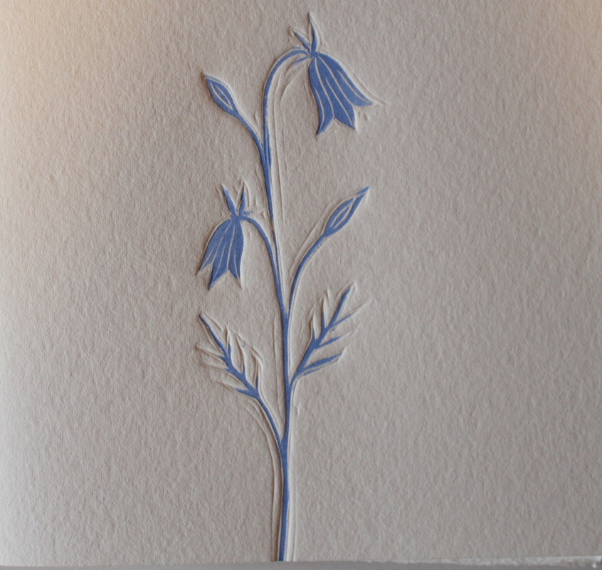 Firingan Kalligrafi - Blåklokke