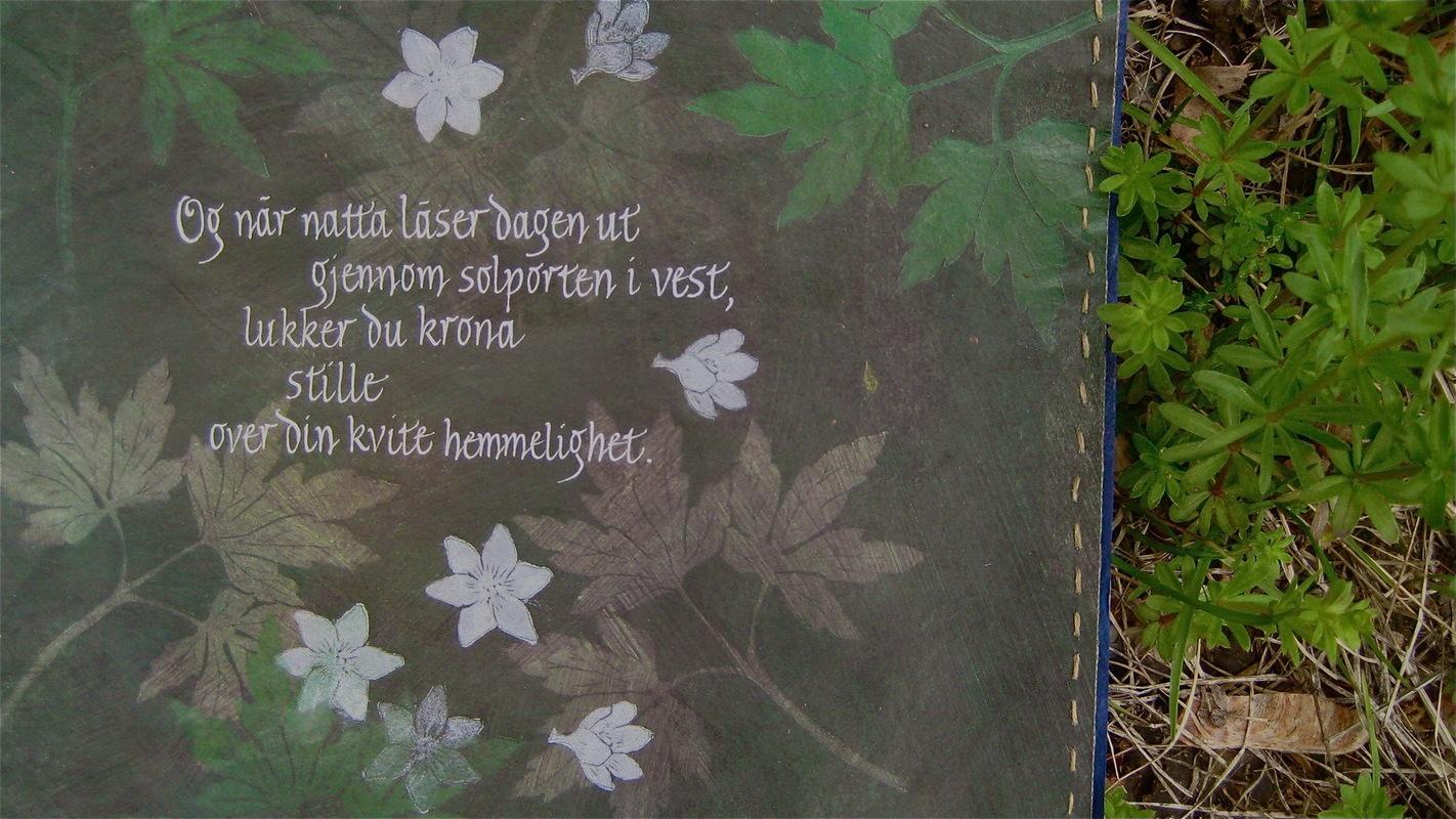 Firingan Kalligrafi - Kvitveis