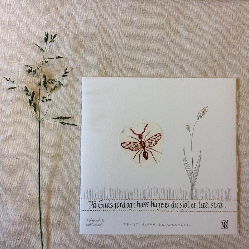 Firingan Kalligrafi - Eit lite strå, tekstutdrag frå Einar Skjæråsen