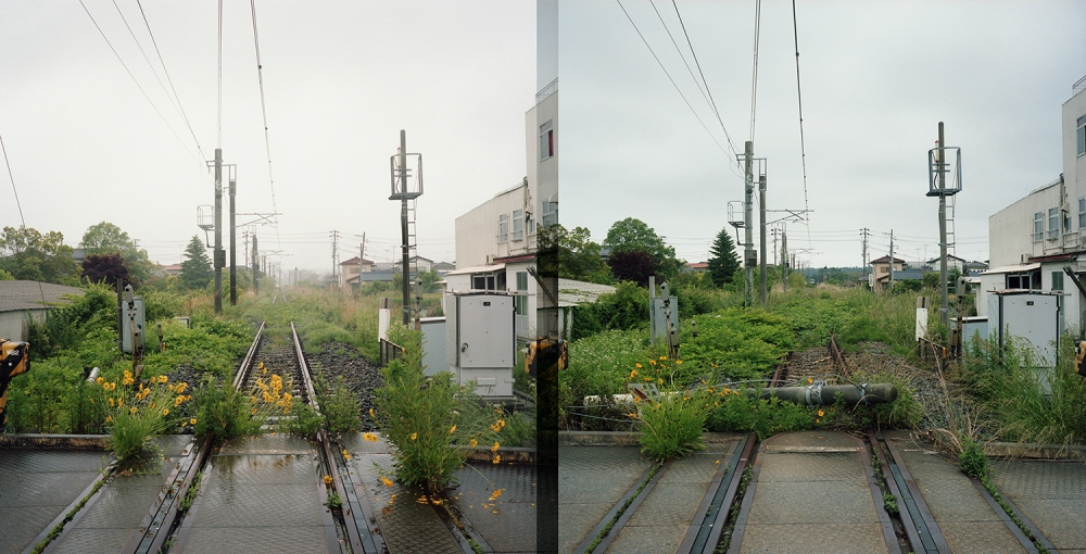 Toshiya Watanabe / 渡部敏哉 - Jun.2012 / Jun.2013
