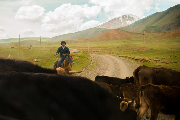 a l e s s a n d r o f a g i o l i - Naryn, Kyrgyzstan, 2018