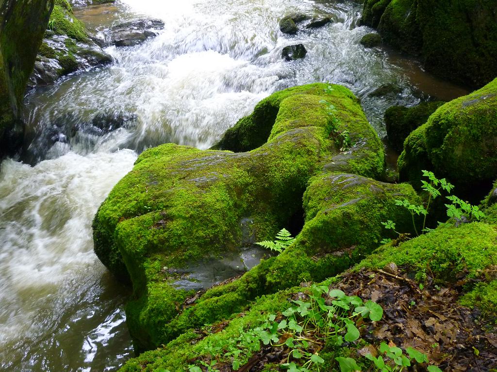 Jörg Kaspari - Landschaftsarchitekt - Wasserfälle mit naturgeformten Basalt