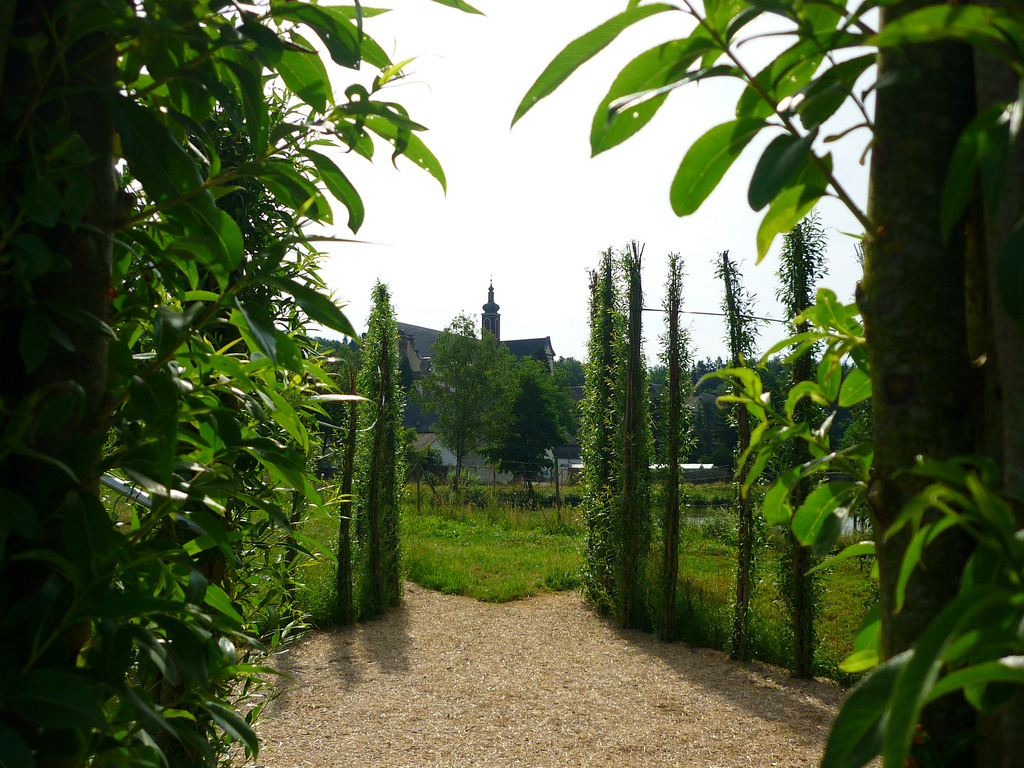 Jörg Kaspari - Landschaftsarchitekt - Blick zum Kloster
