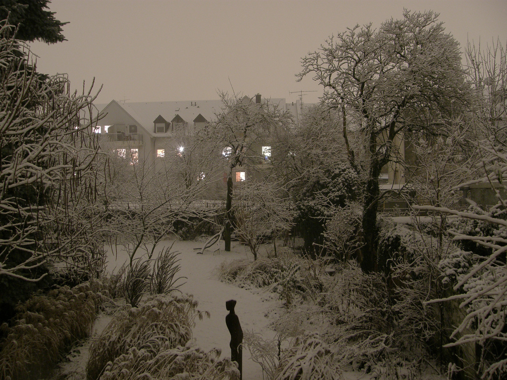 Jörg Kaspari - Landschaftsarchitekt - Dezember (Foto: Robert Richter)