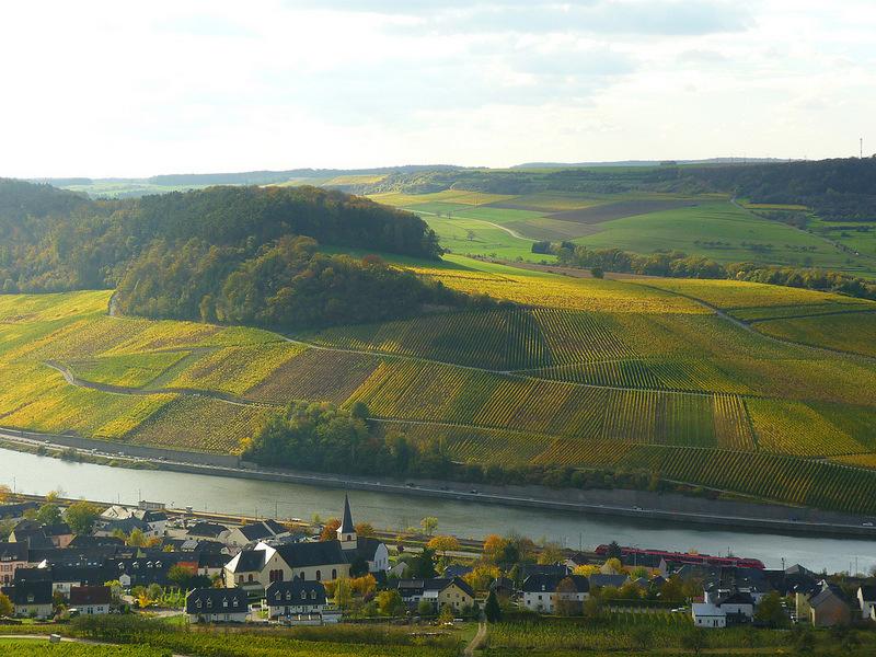 Jörg Kaspari - Landschaftsarchitekt - Herbstlicher Blick auf Nittel