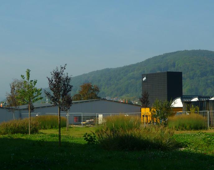 Jörg Kaspari - Landschaftsarchitekt - Die Gräserhügel im Mittelgrund nehmen Bezug auf die Moselbergketten im Hintergrund