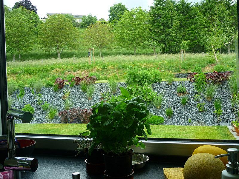 Jörg Kaspari - Landschaftsarchitekt - Küchenfenster-Blick auf idealisierte Wiese mit Kräutern, Blütenstauden und Ziergräsern