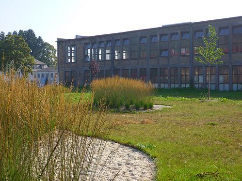 Jörg Kaspari - Landschaftsarchitekt - Urbane Gräserlandschaft