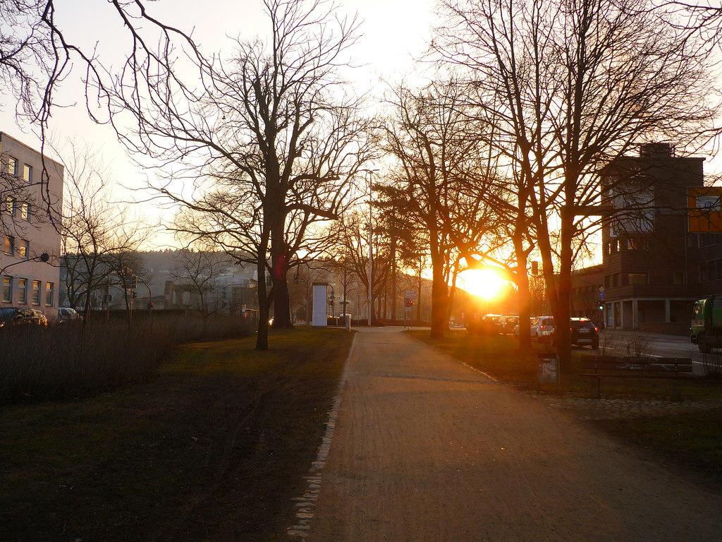 Jörg Kaspari - Landschaftsarchitekt - Licht im Winter (Foto: Südallee - Römische Ost - West Achse - klasse wie die Römer bereits die niedrige Wintersonne aus dem Olewiger Tal in die Stadt geführt haben)