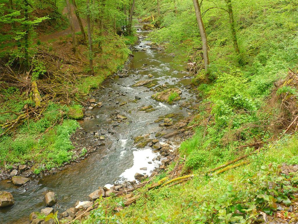 Jörg Kaspari - Landschaftsarchitekt - Tal der Kleinen Kyll