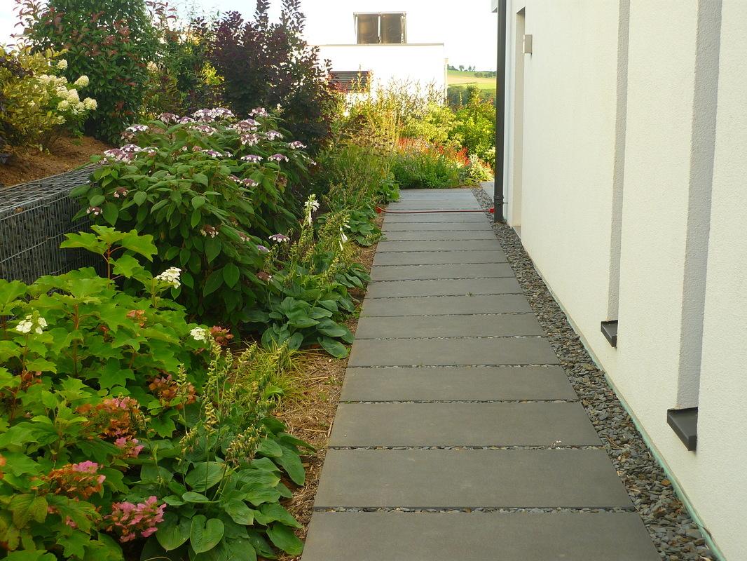Jörg Kaspari - Landschaftsarchitekt - Eine Hortensienpassage bildet seitwärts den Übergang zum privaten Gartenraum